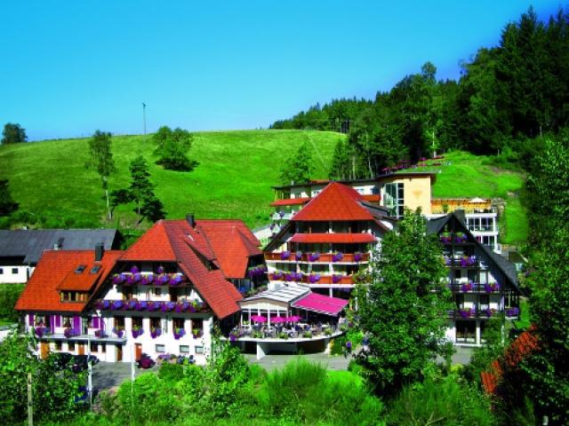 Naturparkhotel Adler St. Roman