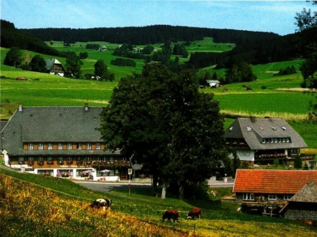 Schwarzwaldgasthof-Hotel zum Löwen