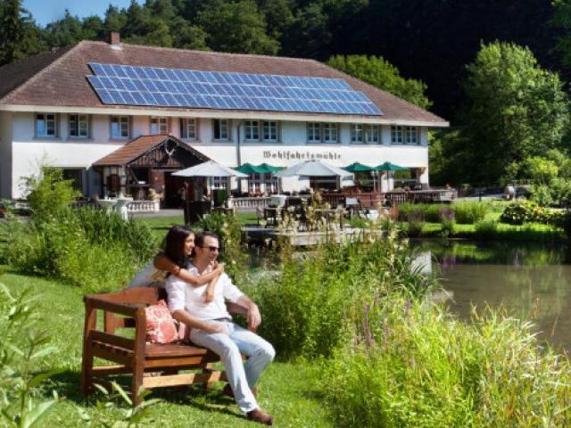 Waldhotel Forellengasthof Wohlfahrtsmühle