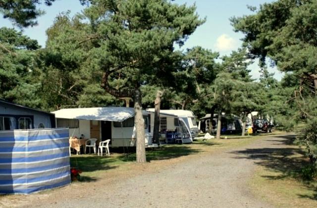 Møllers Dueodde Camping