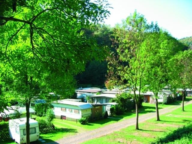 Camping Rheineck