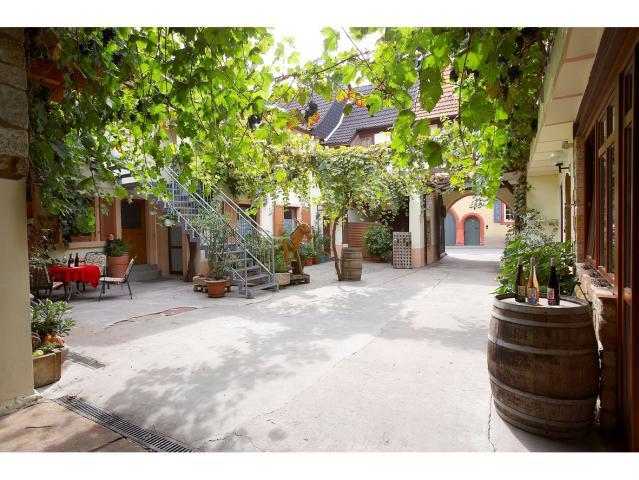 Gästehaus Weingut Klohrer Winzerhof
