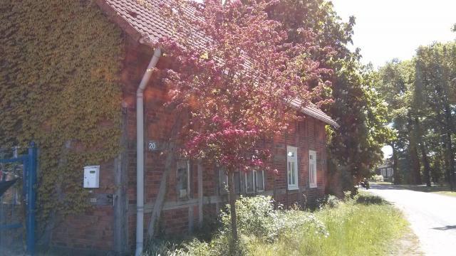 Baum & Blume Ferienwohnung