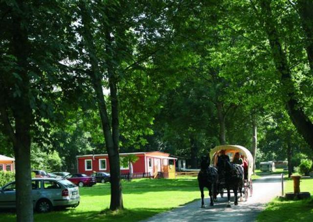 Campingplatz Blütengrund
