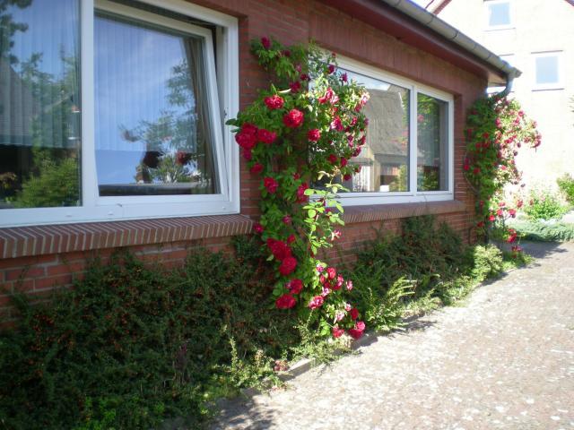 Gästehaus Village