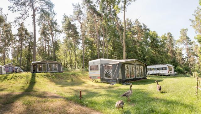 FKK Campingplatz Rätzsee